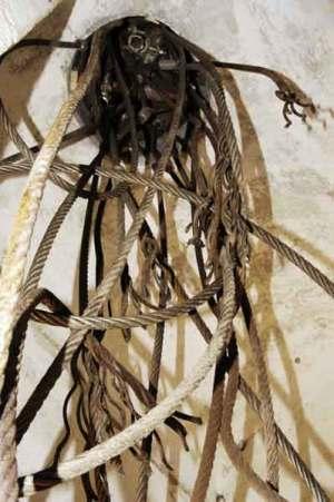 taiguara-alves-giannotti-installazione-albero-potato-02